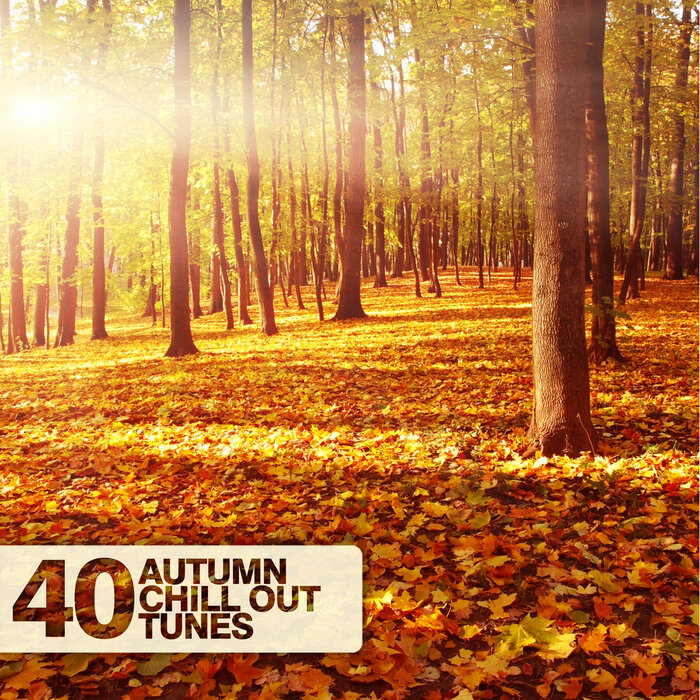 VARIOUS - 40 Autumn Chill Out Tunes