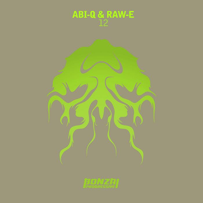 ABI Q/RAW E - 12