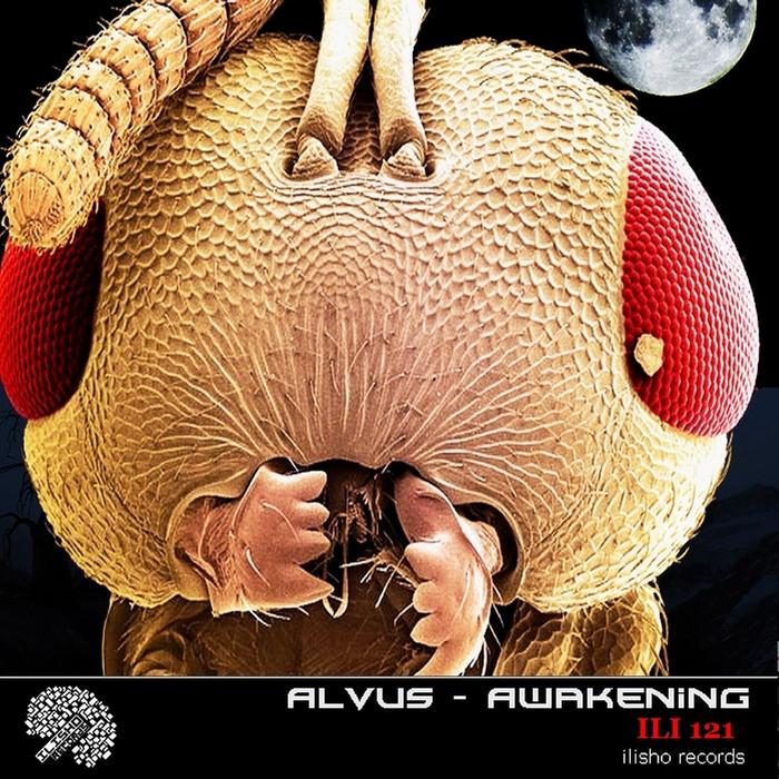 VARIOUS - Alvus Awakening