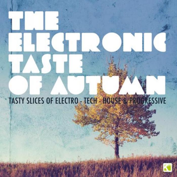 VARIOUS - The Electronic Taste Of Autumn: Tasty Slices Of Electro Tech House & Progressive