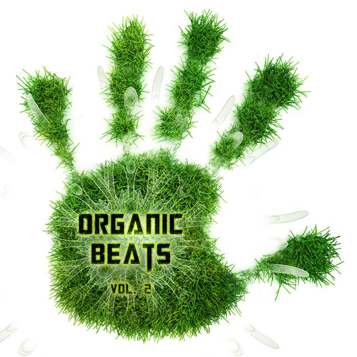 DJ ZEN/VARIOUS - Organic Beats Vol 2