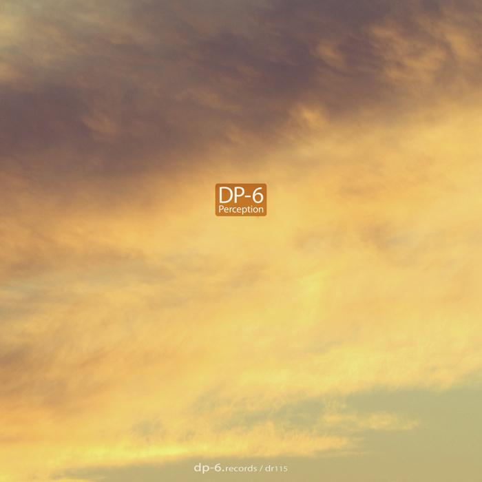 DP 6 - Perception