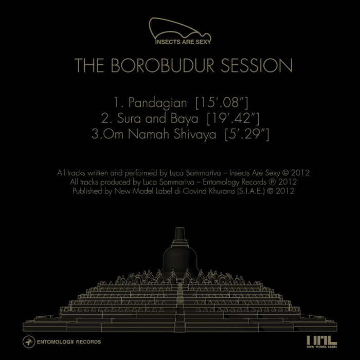 INSECTS ARE SEXY - The Borobudur Session