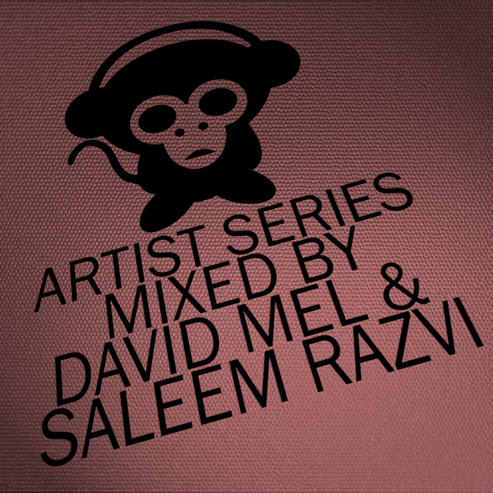 MEL, David/SALEEM RAZVI/VARIOUS - Housepital Artist Series Vol 9 (mixed by David Mel & Saleem Razvi) (unmixed tracks)
