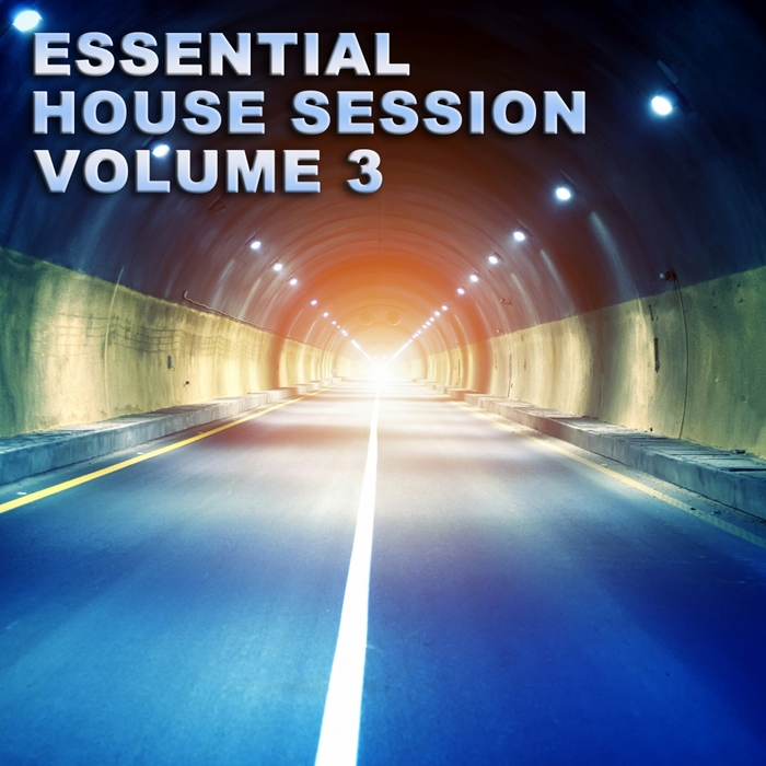 VARIOUS - Essential House Session Vol 3