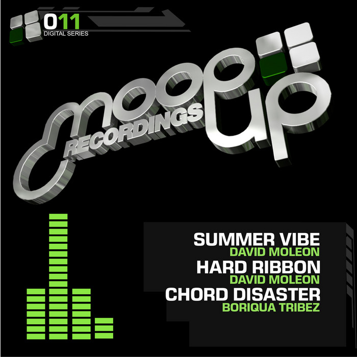 MOLEON, David/BORIQUA TRIBEZ - Summer Vibe