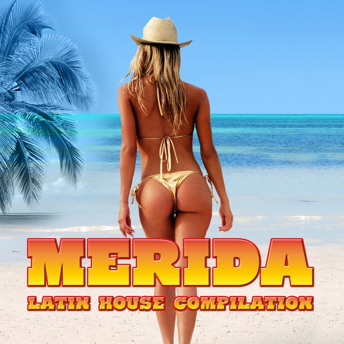 VARIOUS - Merida (Latin House Compilation)