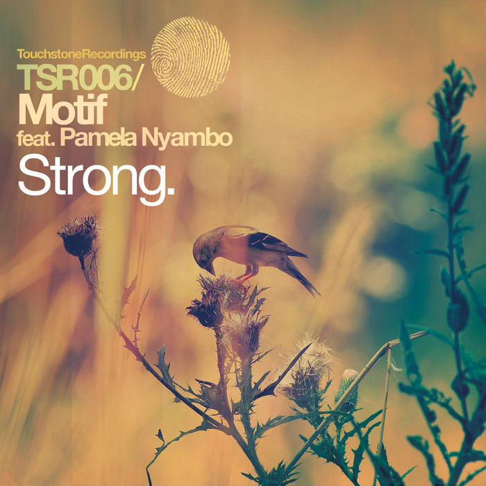 MOTIF feat PAMELA NYAMBO - Strong