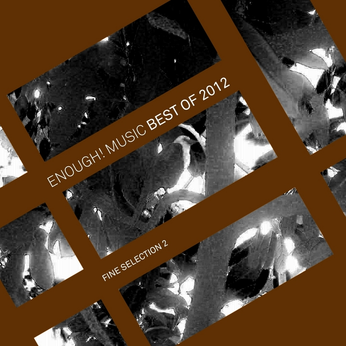 VARIOUS - Enough Music Best Of 2012: Fine Selection 2
