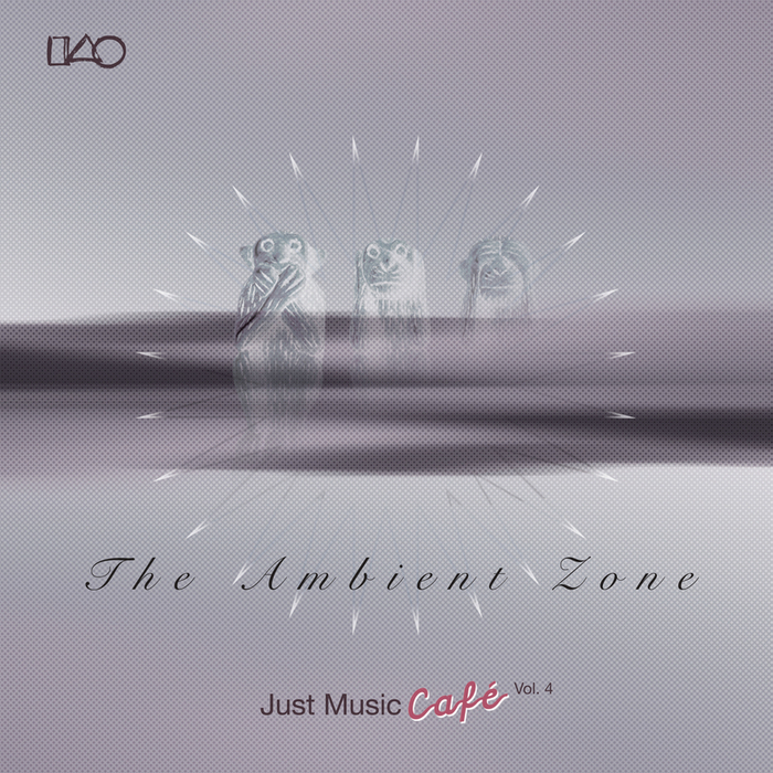 VARIOUS - The Ambient Zone Just Music Cafe Vol 4