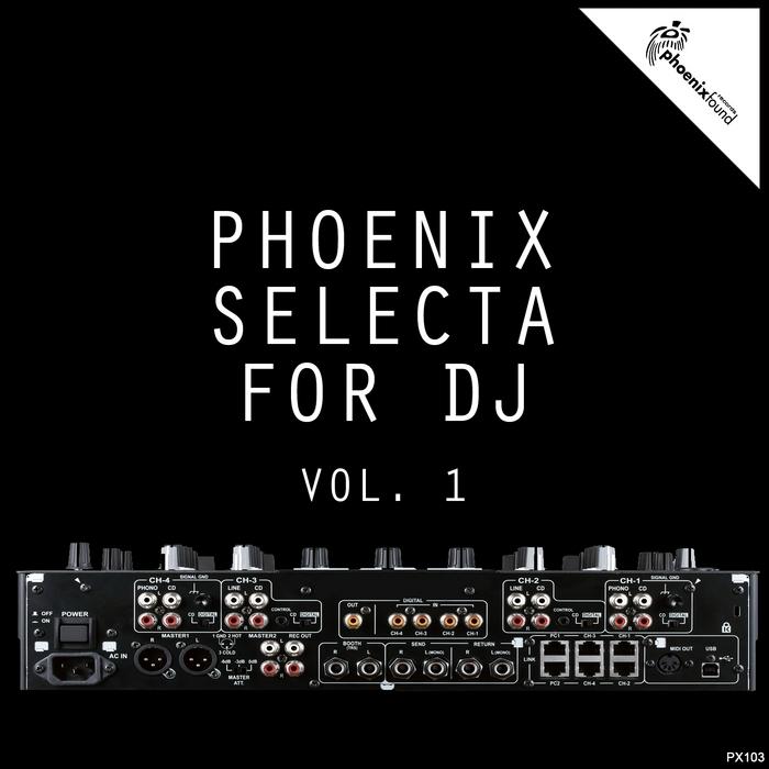 VARIOUS - Phoenix Selecta For DJ Vol 1