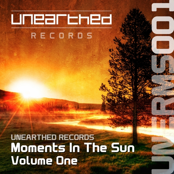 VARIOUS - Moments In The Sun Volume One