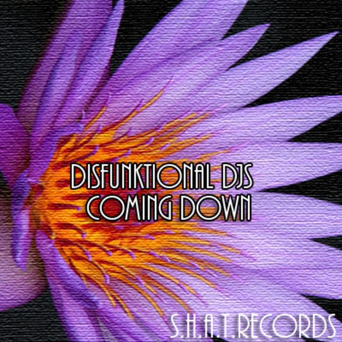 DISFUNKTIONAL DJS - Coming Down
