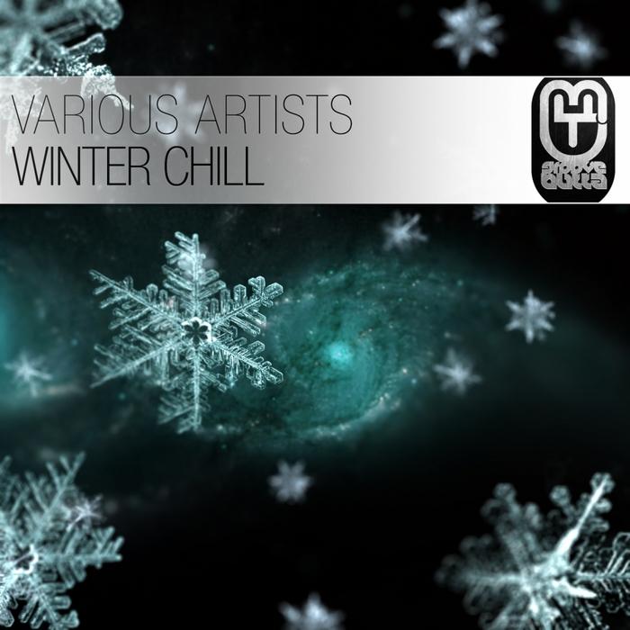 VARIOUS - Winter Chill