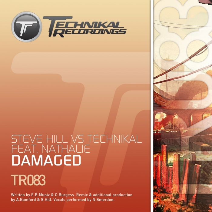 STEVE HILL vs TECHNIKAL feat NATHALIE - Damaged