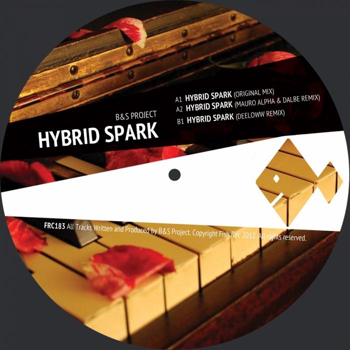 B&S PROJECT - Hybrid Spark