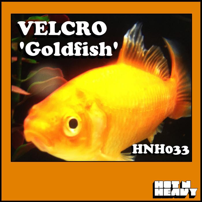VELCRO - Goldfish
