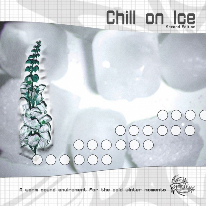 VARIOUS - Chill On Ice