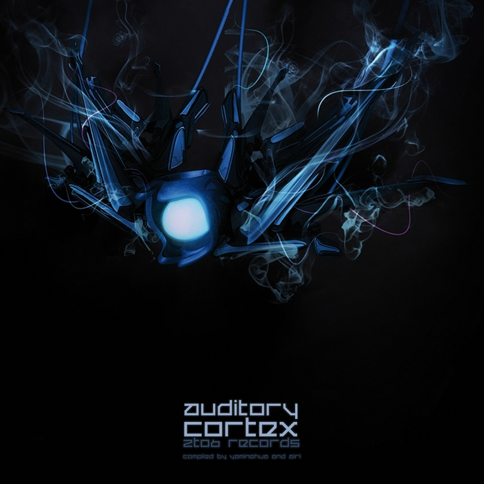 VARIOUS - Auditory Cortex