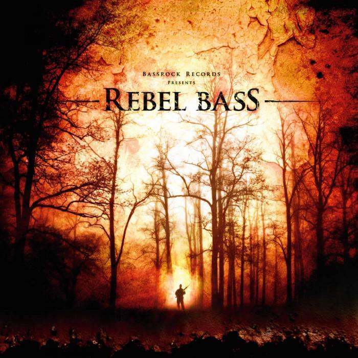 VARIOUS - Rebel Bass