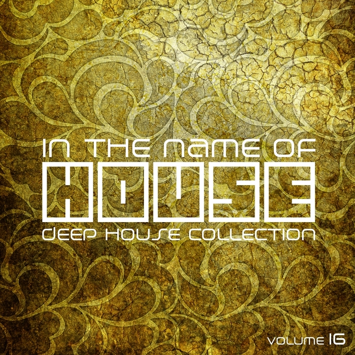 VARIOUS - In The Name Of House Vol 16 (Deep House Collection)