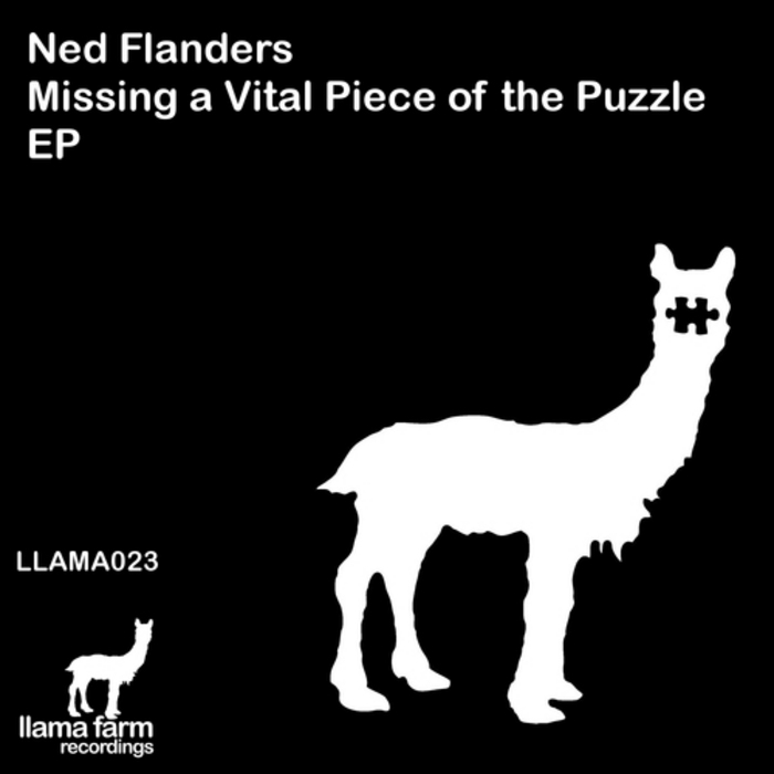 FLANDERS, Ned - Missing A Vital Piece Of The Puzzle