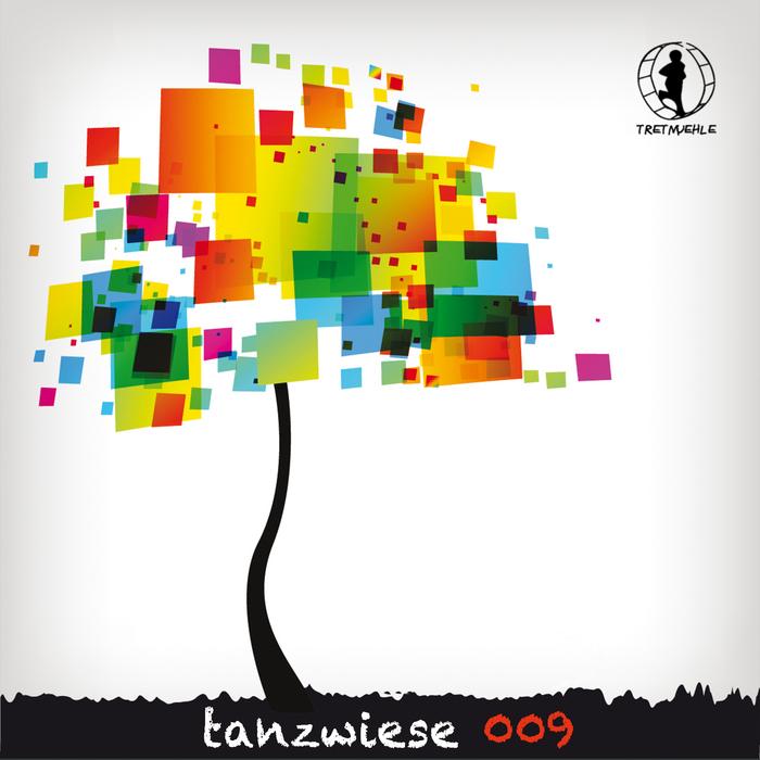VARIOUS - Tanzwiese 009