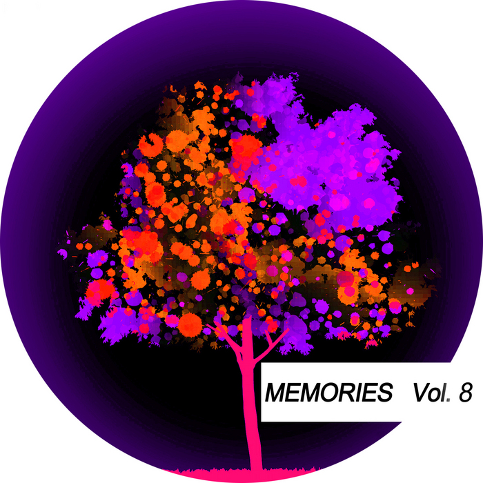 VARIOUS - Memories Vol 8