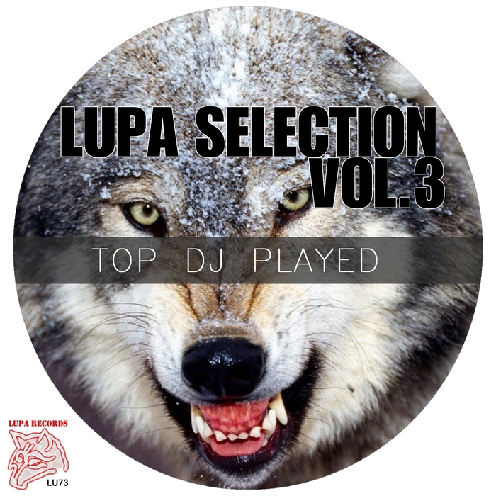 MARFEL/MARKET FISH PROJECT/EDGAR GALLAN/MASTR/MIRCO DEE/STEN PH - Lupa Selection Vol 3