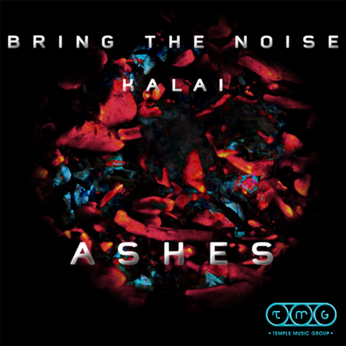 BRING THE NOISE - Ashes EP