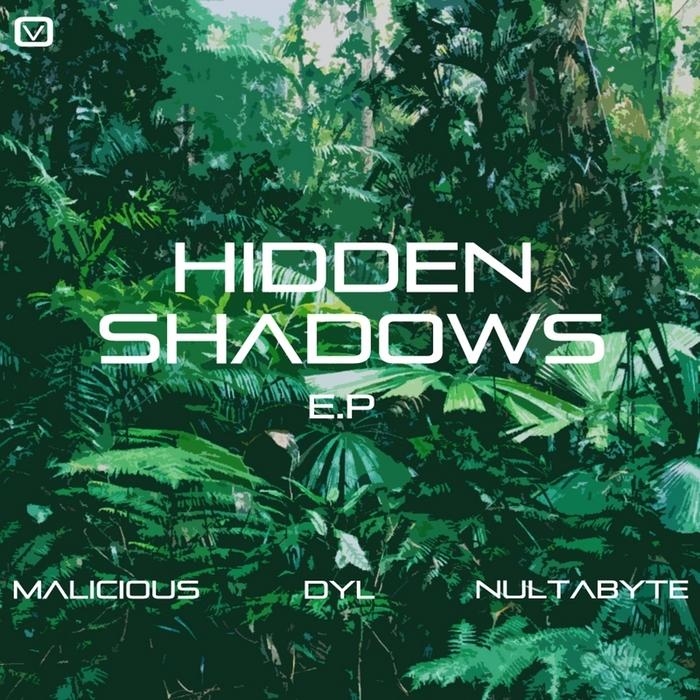 MALICIOUS/DYL/NULTABYTE - Hidden Shadows
