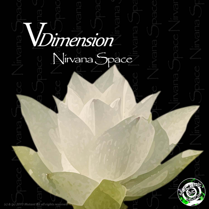 V DIMENSION - Nirvana Space