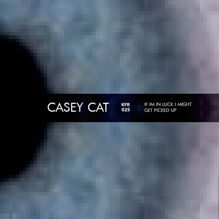 CASEY CAT - If I'm In Luck I Might Get Picked Up