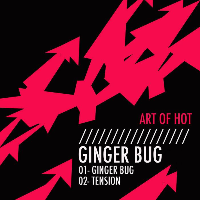 ART OF HOT - Ginger Bug