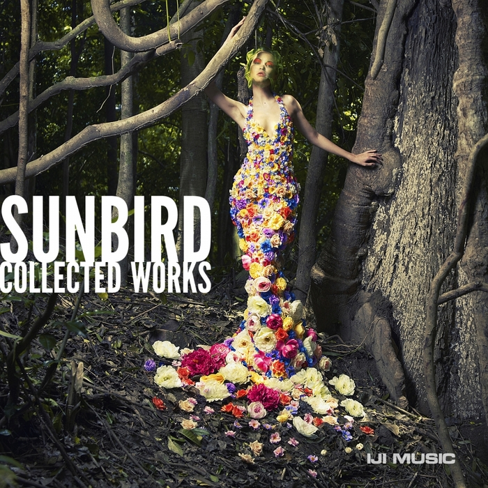 SUNBIRD - Collected Works