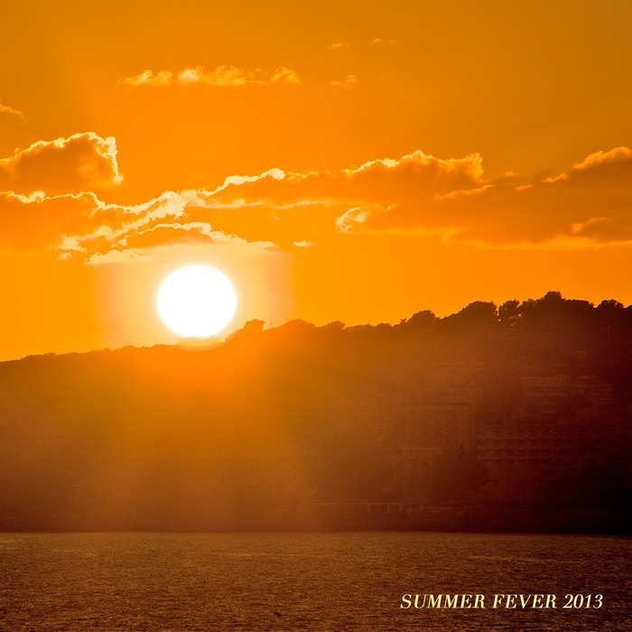 VARIOUS - Summer Fever 2013