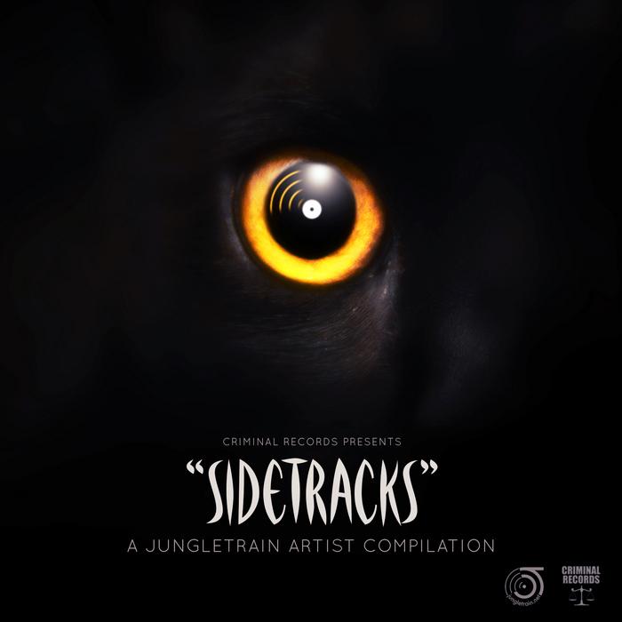 VARIOUS - Sidetracks: A Jungletrain Artist Compilation