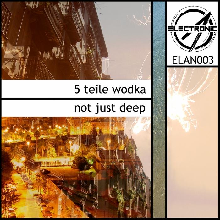 5 TEILE WODKA - Not Just Deep