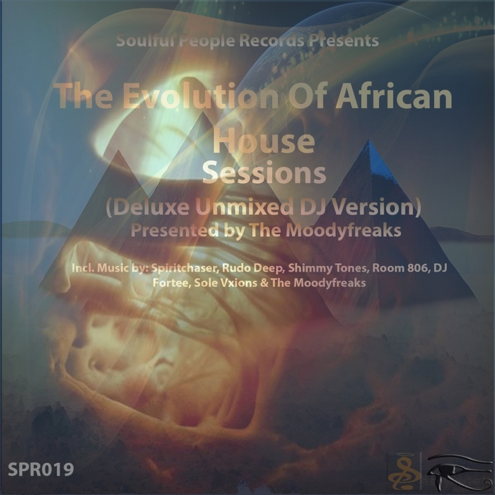 VARIOUS - The Evolution Of African House (Deluxe Unmixed DJ Version)