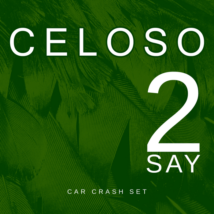 CELOSO - 2 Say