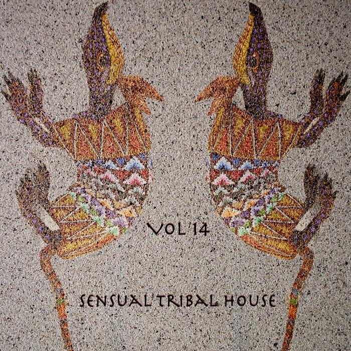 VARIOUS - Sensual Tribal House #14