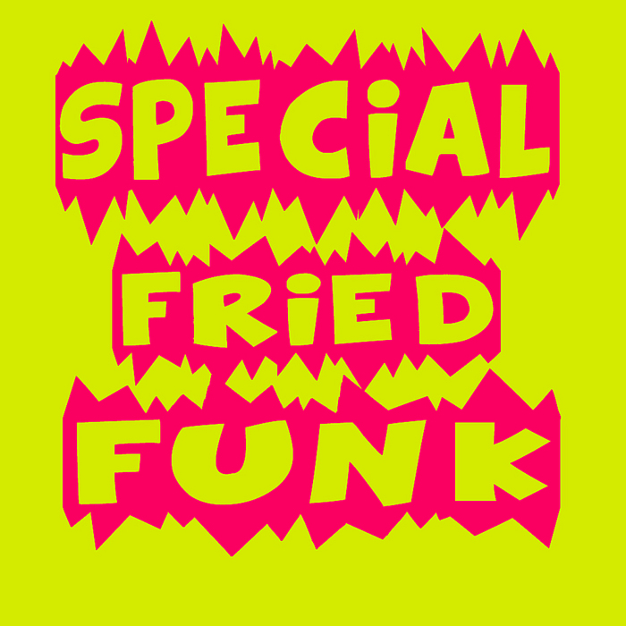 VARIOUS - Special Fried Funk