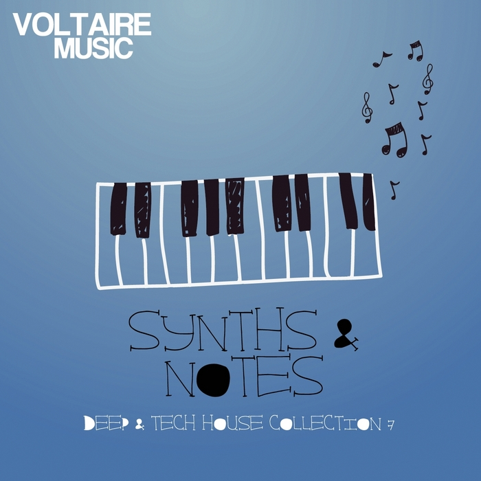 VARIOUS - Synths & Notes 7.0