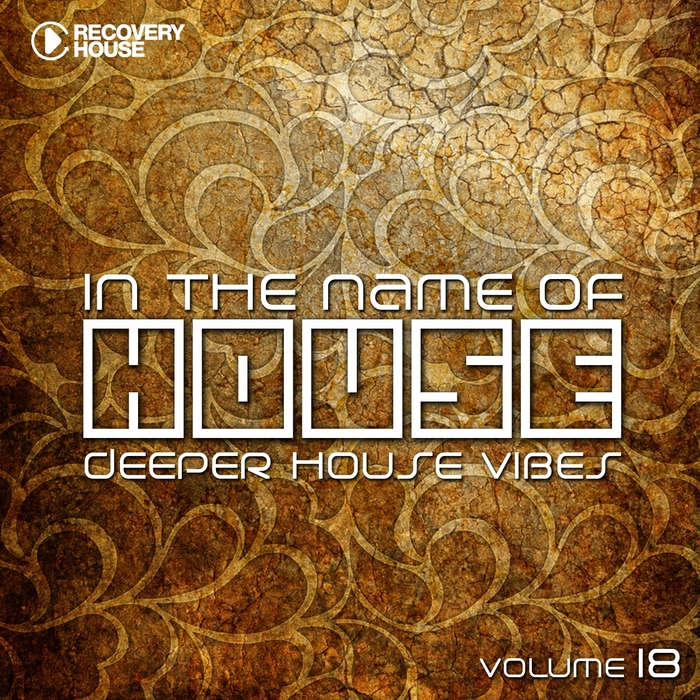 VARIOUS - In The Name Of House #18