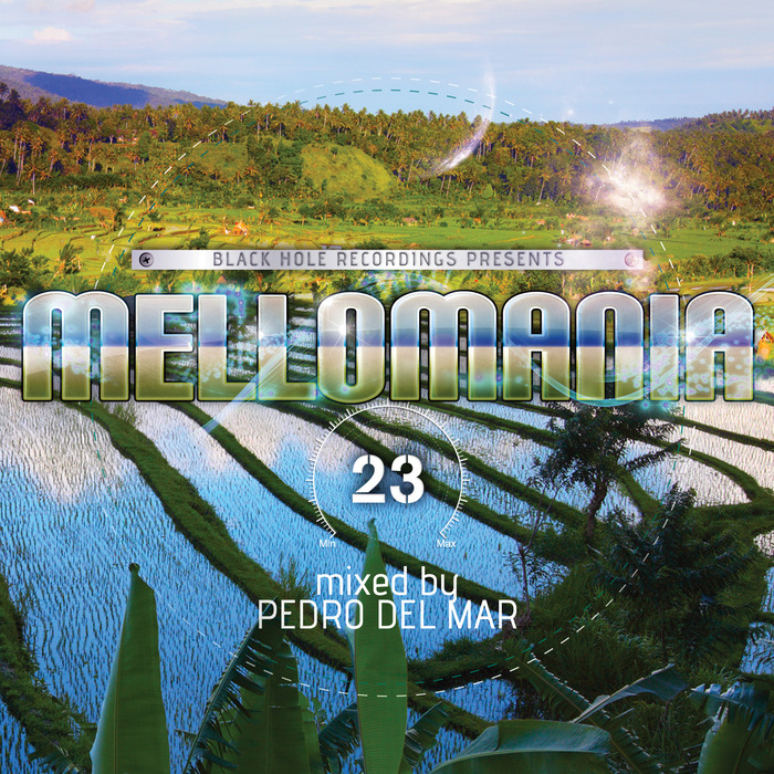 DEL MAR, Pedro/VARIOUS - Mellomania 23 (unmixed tracks)