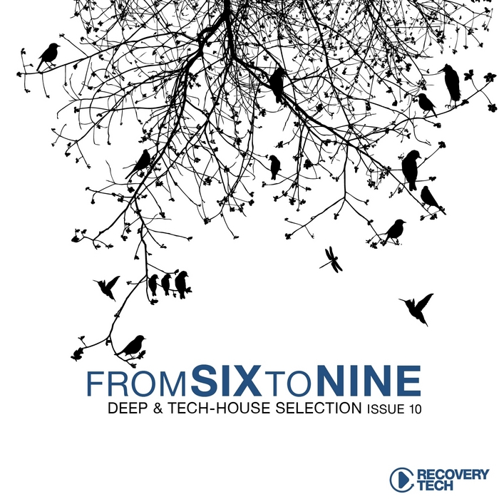 VARIOUS - Fromsixtonine Issue 10 Deep & Tech House Selection