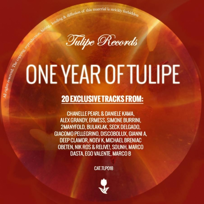 VARIOUS - One Year Of Tulipe