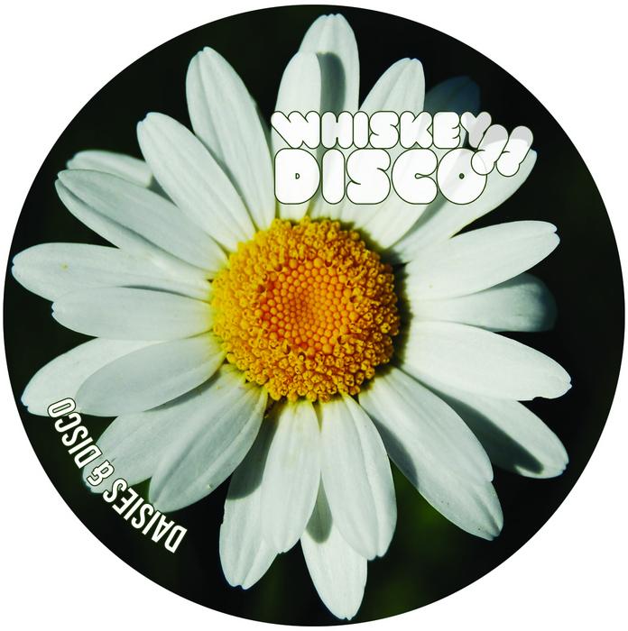 BG BAARREGAARD/VINS/SANDROBIANCHI & TRIPMANN - Daisies & Disco