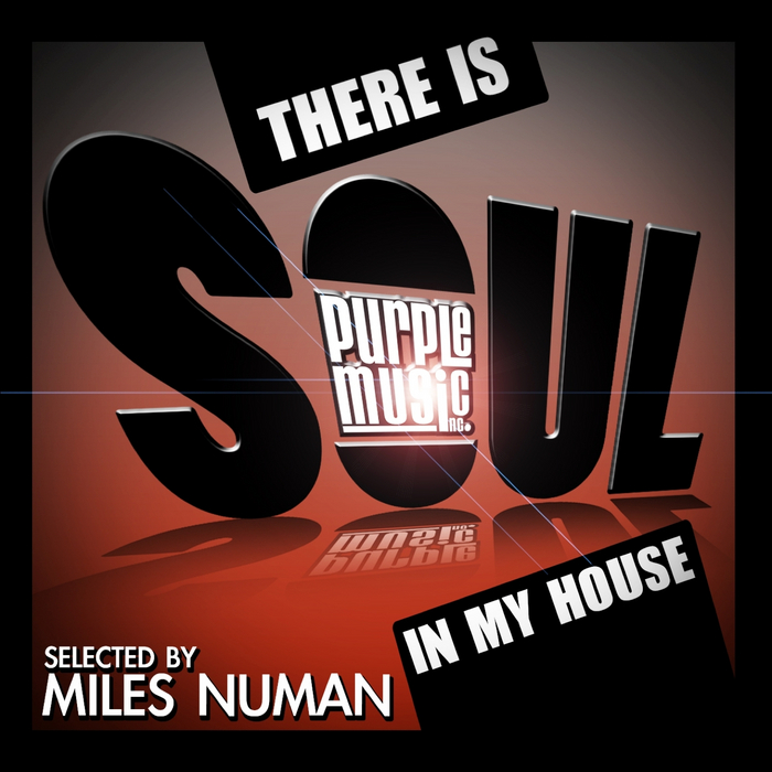 VARIOUS - There Is Soul In My House