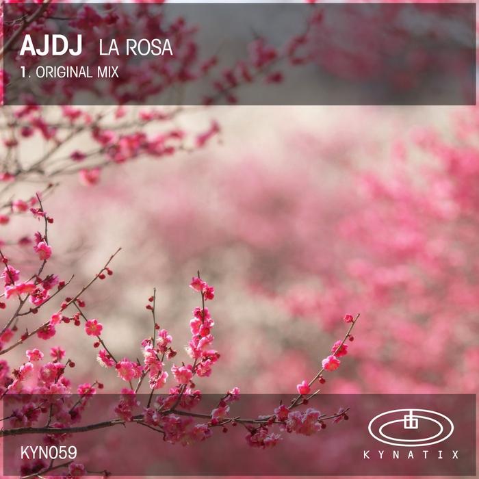 AJDJ - La Rosa